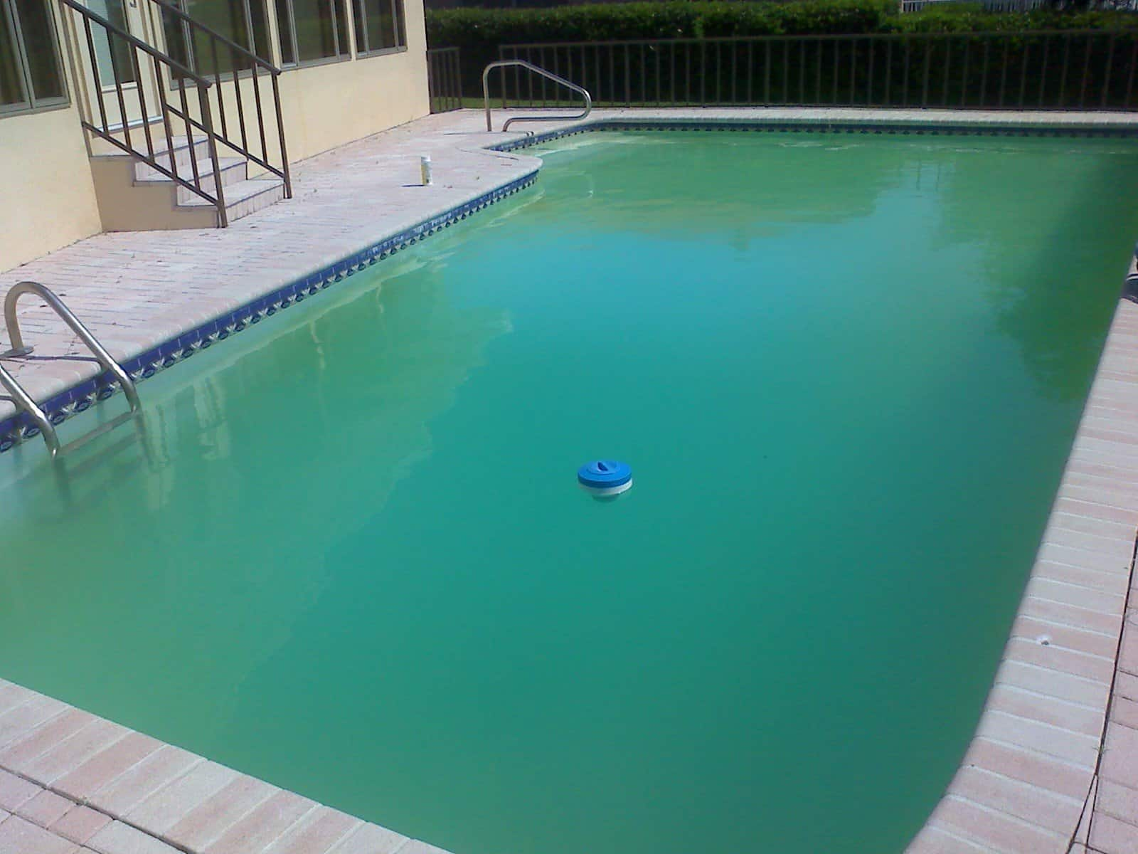 Cleanpools Pool Cleaning Maintenance Experts For Sa
